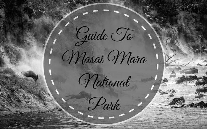 Masai Mara National Park guide