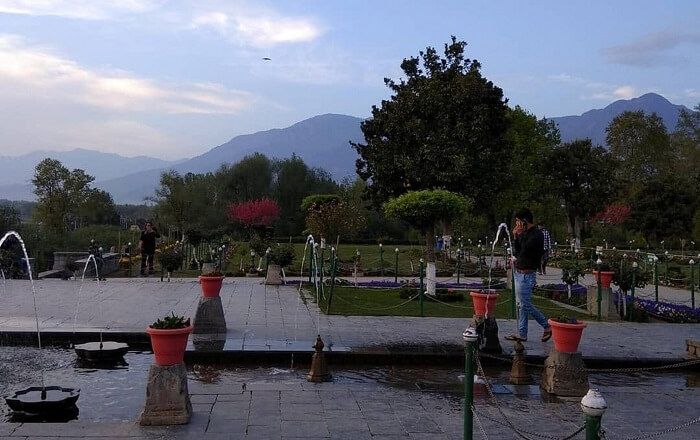 beautiful garden in srinagar