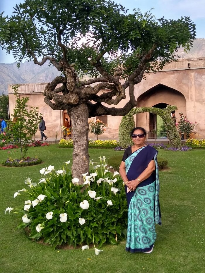 garden in kashmir