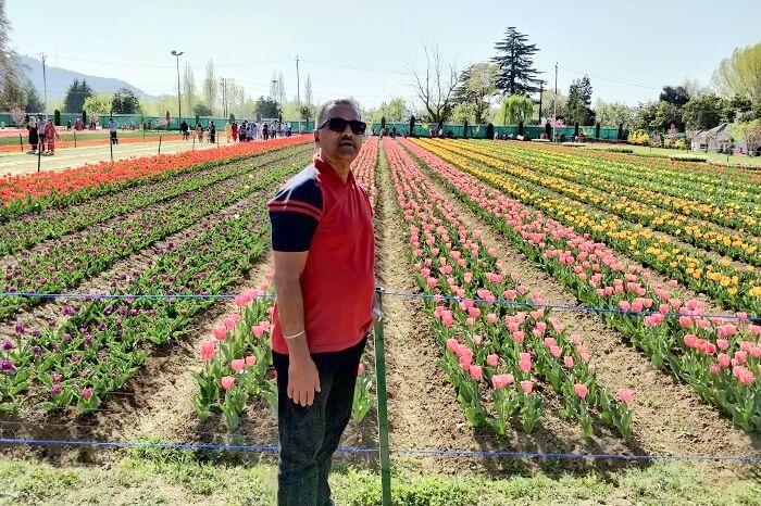 In Tulip Garden