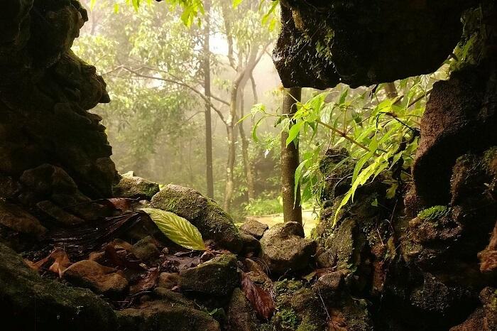 Nongthymmai Eco Park