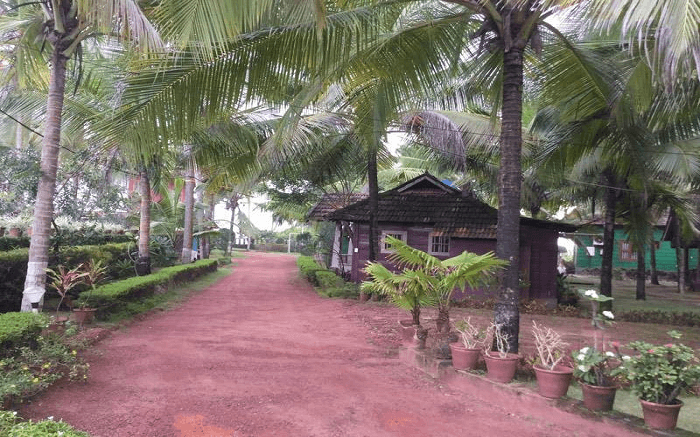 Pranav Resort amid a palm fringed premises in Kann