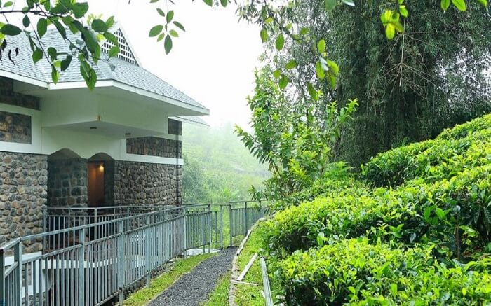 Resorts In Idukki That Let You Taste A Piece Of Heaven