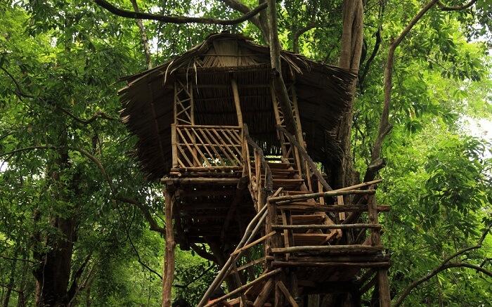 a kerala style tree house s
