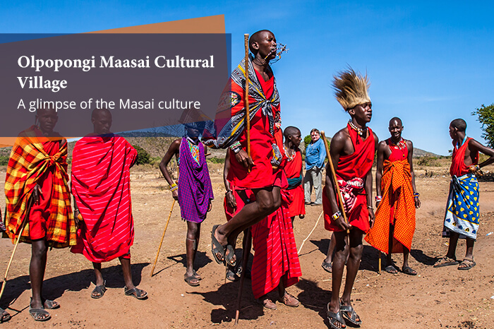 acj-2906-masai-mara-national-park (12)
