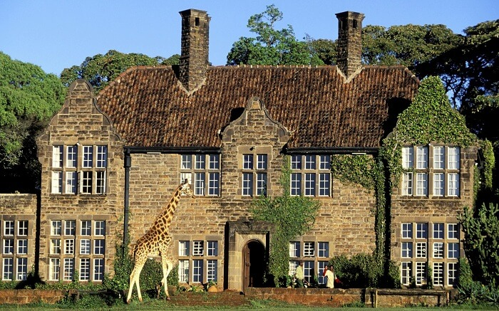 acj-3005-giraaffe-manor-kenya (12)