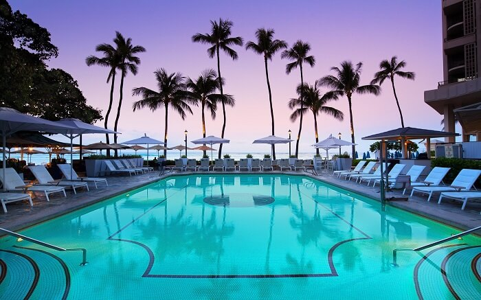 grand outdoor pool surrounded by palm trees and overlooking teh sea
