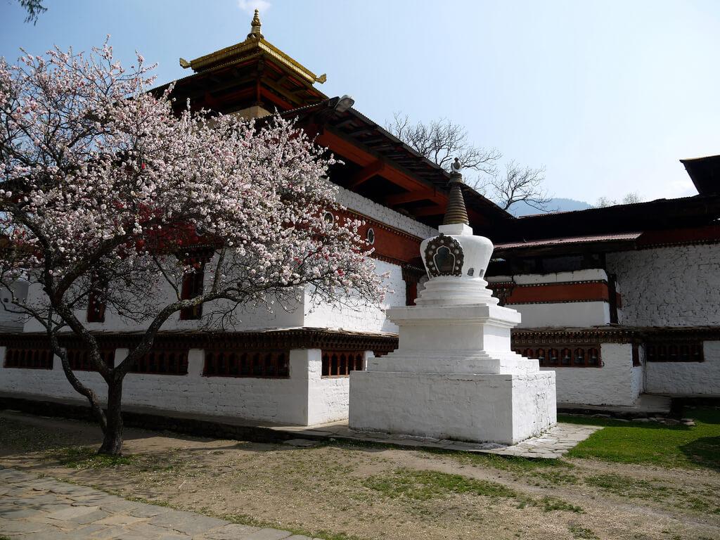 A view of Kyichu Lakhang