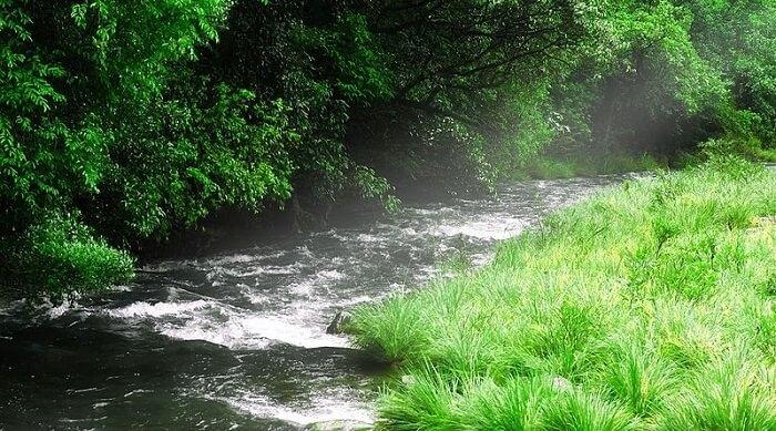natural pool in kudremukh