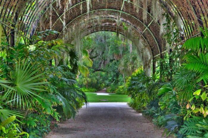 unique-flower-gardens-in-orlando-orlando-botanical-garden-