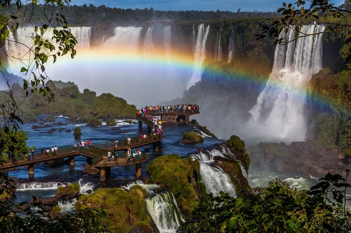 Iguazu National Park Everything You Need To Know