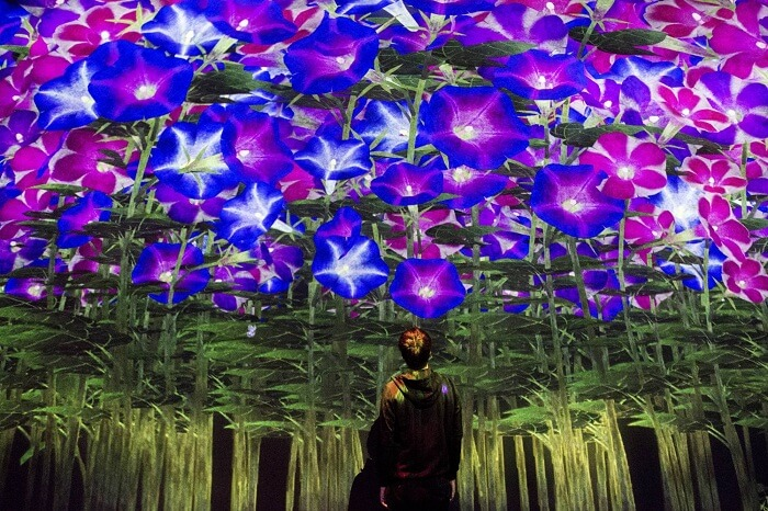 psychedelic digital art museum in tokyo
