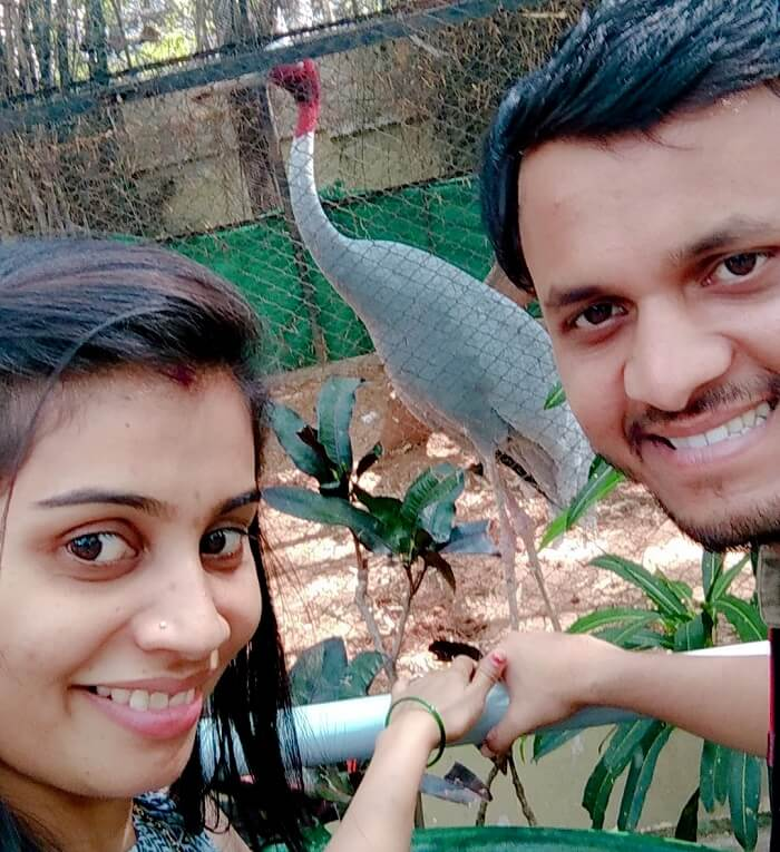 couple in myzore zoo