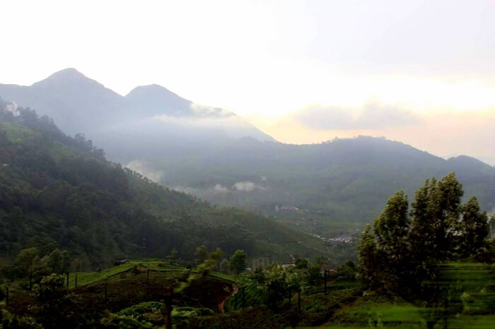 beautiful view of munnar