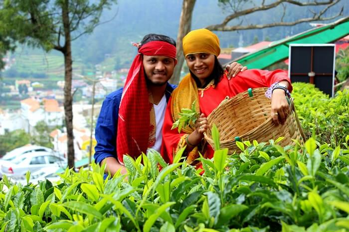 couple at tea farm