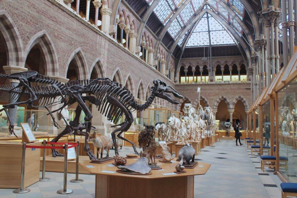 Natural History Museum Oslo