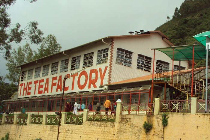 Tea lovers, cover your face before entering the tea factory in Ooty