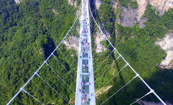 World's Largest Glass Skywalk In China cover