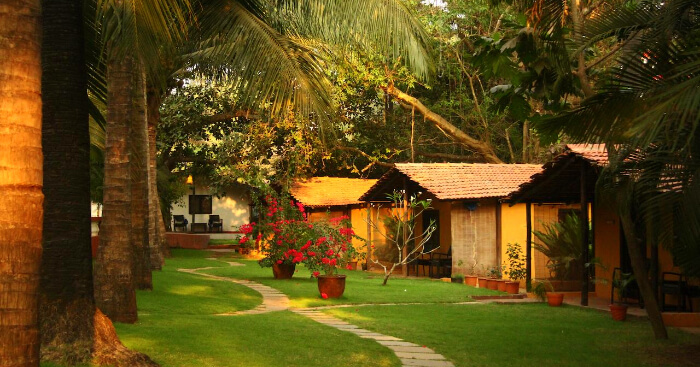 Calangute resort