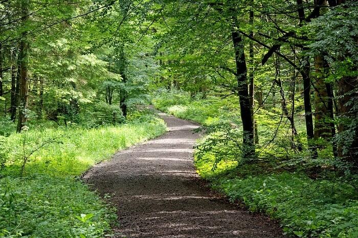 gilbert trail