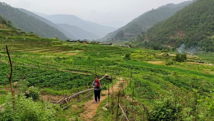 rohit bhutan family trip travelogue chilli fields