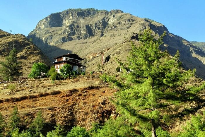 rohit bhutan family trip travelogue monastery in green