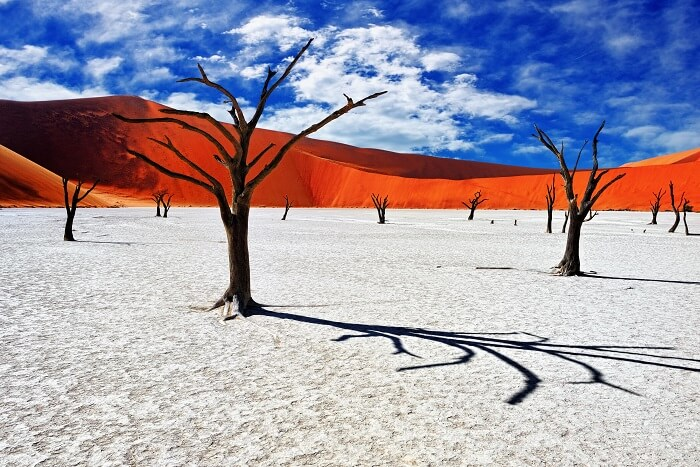 The Namib Desert Africa