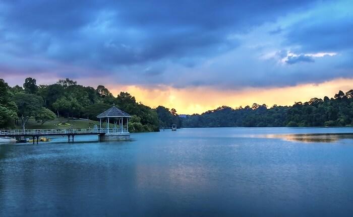 MacRitchie Reservoir Singapore