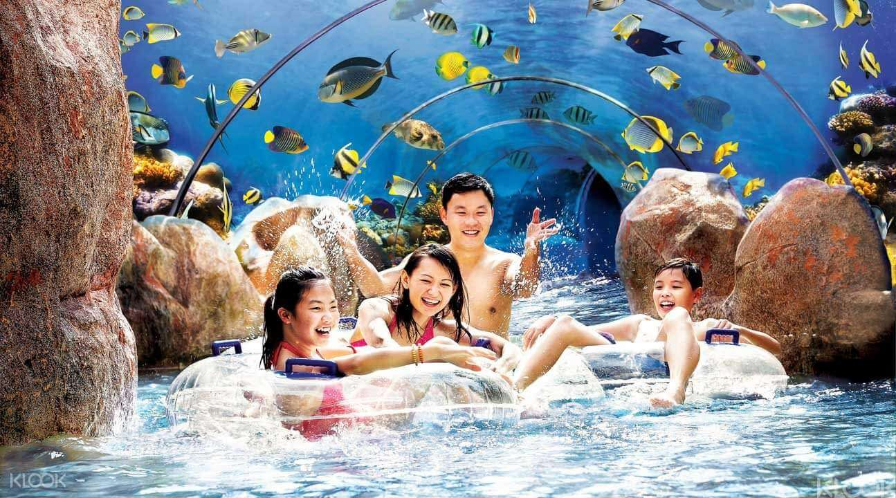 Adventure Cove Water Park