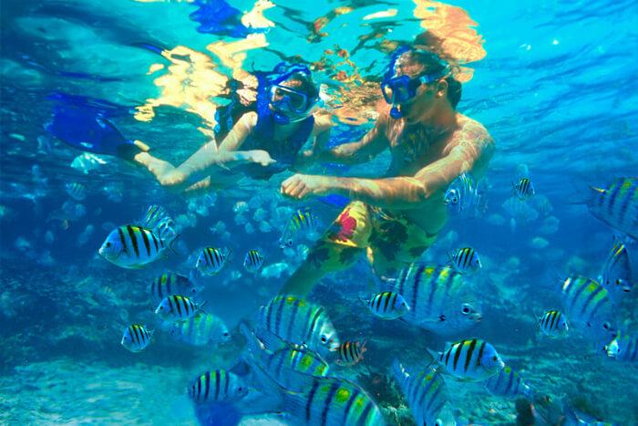 Blue Bay Marine Park in Mauritius