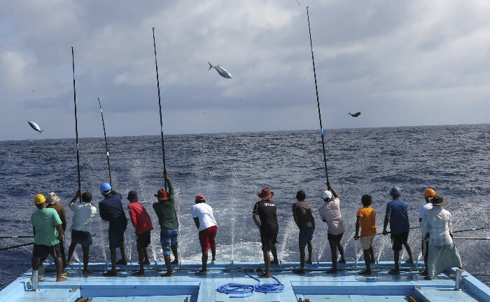 Tourists engaged in fishing activities in Maldives