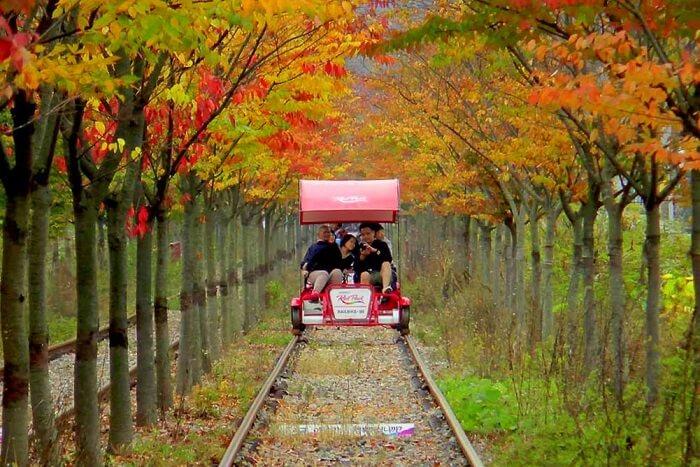 Gangchon Rail Bike Park
