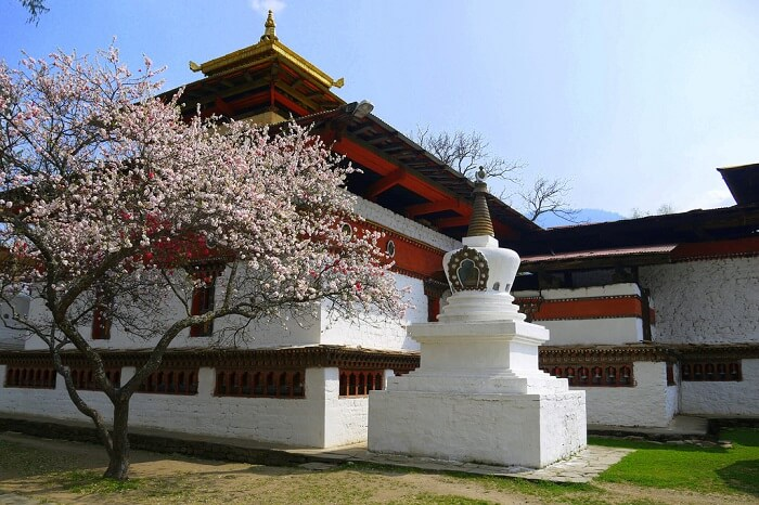 Get mesmerized by the blue beauty of Kyichu Lhakhang