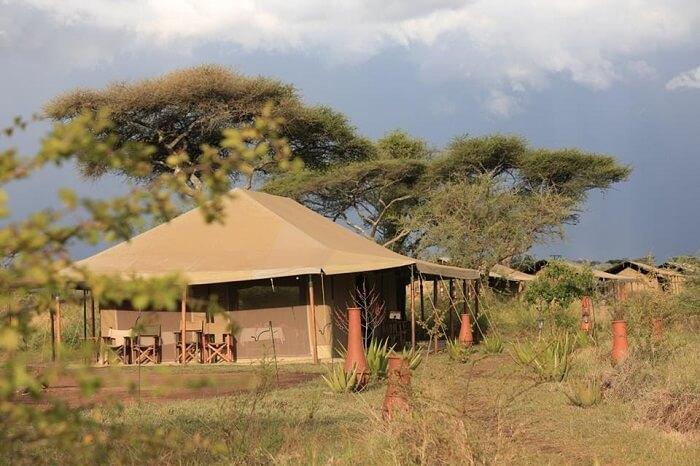 Kenzan Luxury Camp