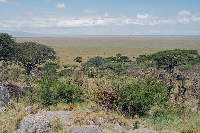 Nabi Hill