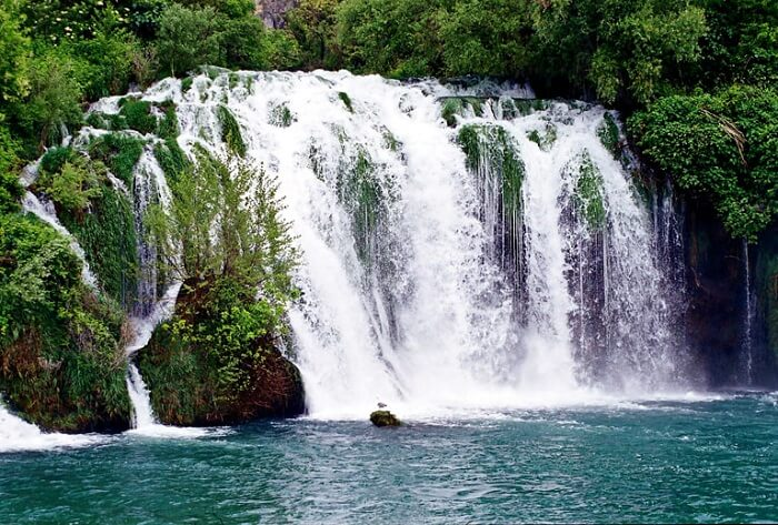 roski in krka national park