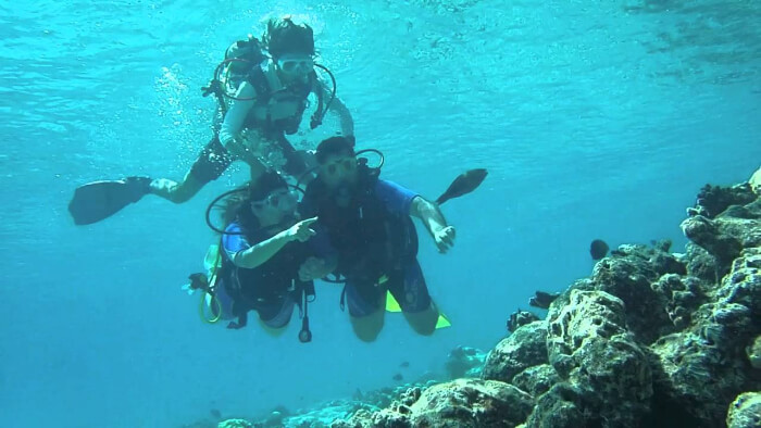 3 scuba divers exploring the ocean floor