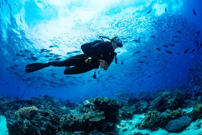 Scuba Diving kata Beach