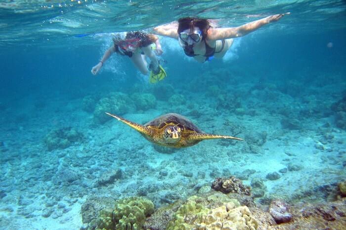 Snorkel at the Surin Islands