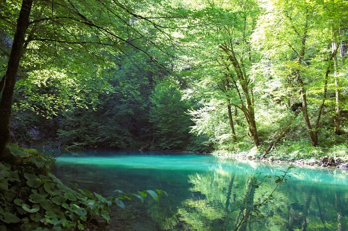 kupa river