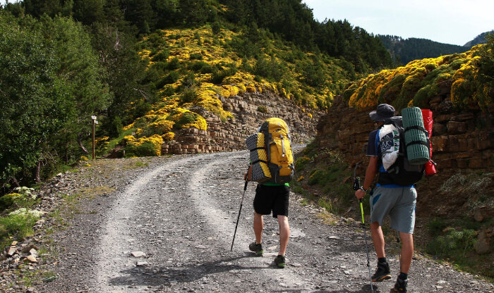 A man hiking through forest