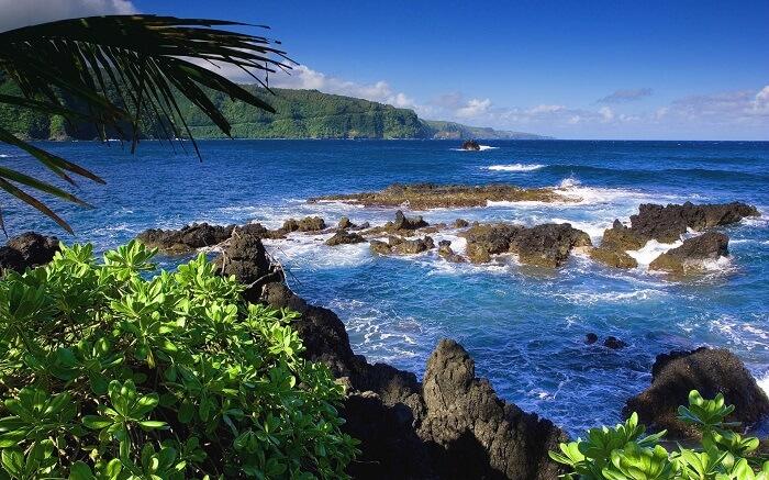 Bali National Parks guide