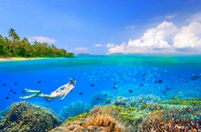 10 Best Things To Do In Sulawesi Island