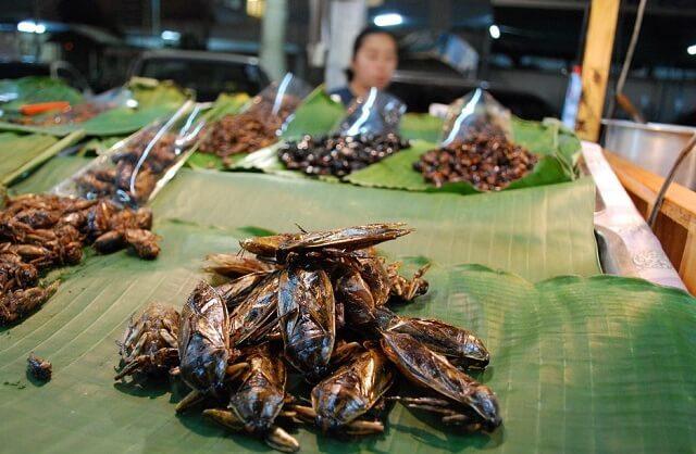 enjoy the traditional thai dish
