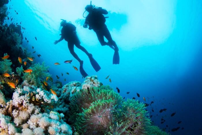 Scuba Diving In Bentota