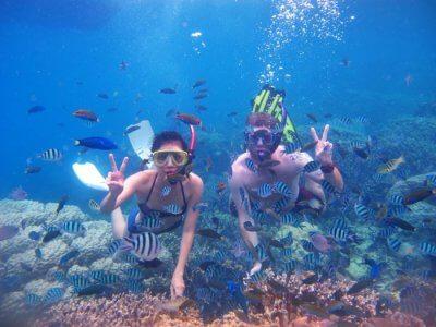 The Beautiful Underwater World