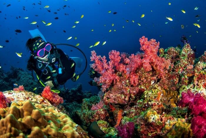 scuba diving singapore