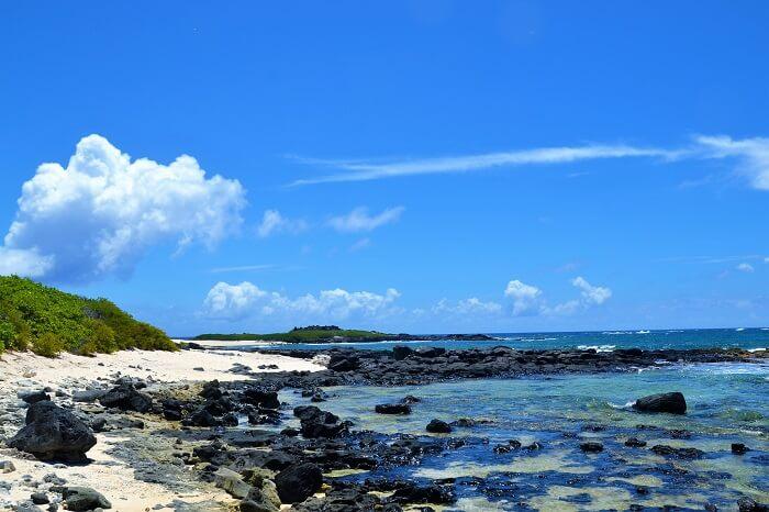ile aux cerf coastline
