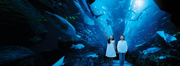 Kids enjoying in Dubai Aquarium