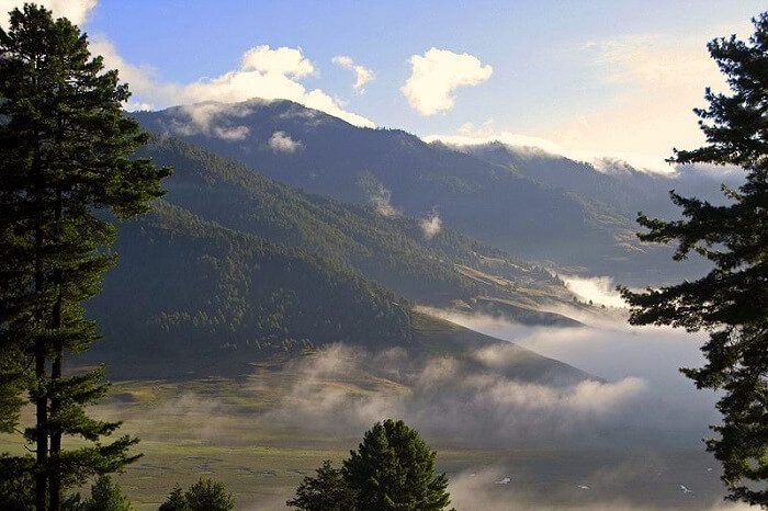 Basic Facts About Royal Manas National Park
